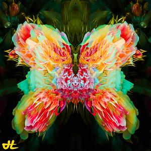 JR8_6542-Edit-smplf-mprsn-orb5