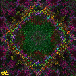 JR8_5045-orb4