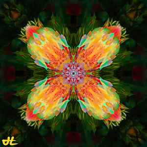 JR8_6542-Edit-smplf-mprsn-orb8