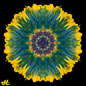 JE8_9873-Edit-orb6