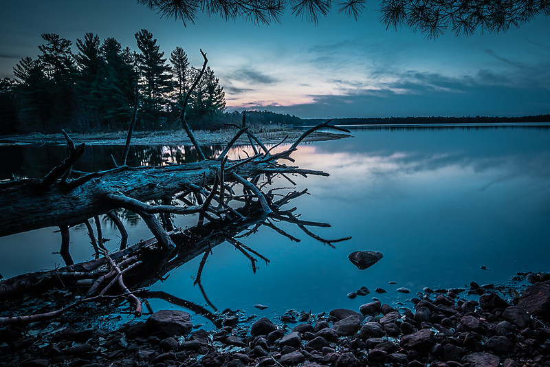 Wildrice Lake Sunrise, Northern WIsconsin