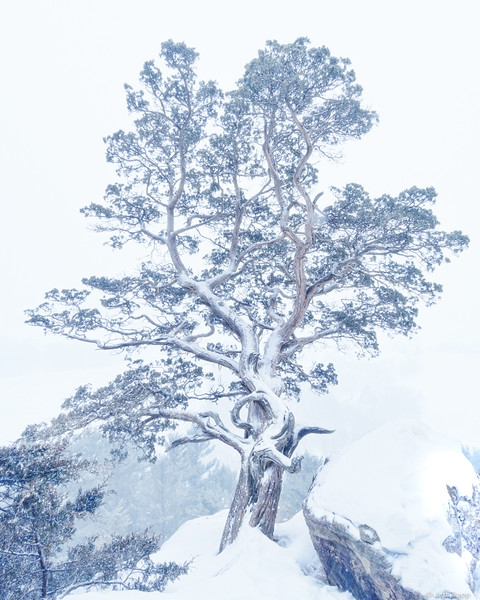Gibraltar Rock Snowstorm