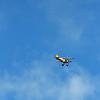 Jekyll Wharf - Biplane 07-24-20