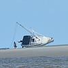 Dolphin Tour - Jekyll Island Boat Tours 06-16-18