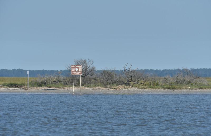 Jekyll Island Boat Tours Birding Expedition 10-14-19