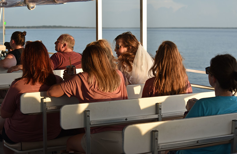 Jekyll Island Boat Tours Dolphin 06-25-19