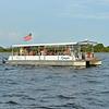 Jekyll Island Boat Tours Dolphin Daze Dolphin 07-02-20