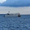 Dolphin Tour - Jekyll Island Boat Tours 07-07-18