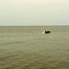 Jekyll Island Boat Tours Dolphin Daze Dolphin 06-26-20