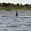 Jekyll Island Boat Tours Dolphin Daze Sharks  08-15-20