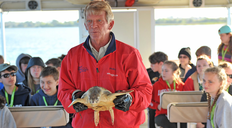 Jekyll Island Boat Tours - Eco Trip - Ridley Sea Turtle - Released 03-29-19