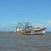Jekyll Island Boat Tours - Fran & Lloyd 08-04-18
