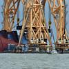 Jekyll Island Boat Tours Golden Ray 11-19-20