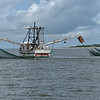 Jekyll Island Boat Tours - Little Lloyd Shrimp Boat  08-27-19