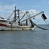 Jekyll Island Boat Tours - Little Lloyd Shrimp Boat  08-27-19
