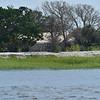 Jekyll Island Boat Tours - Little Racoon Key 07-29-18