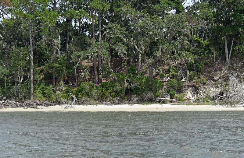 Jekyll Island Boat Tours - Terrapin Point 07-28-19