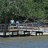 Jekyll Island Boat Tours - St. Andrews Picnic Area 08-04-18