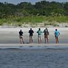 Dolphin Tour - Jekyll Island Boat Tours  Stranded Manatee 07-18-18
