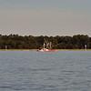 Jekyll Island Boat Tours - Miss Frankie Sunken Shrimp Boat 11-29-18