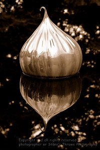 016-dale_chihuly_glass-st_louis_mo-04jul06-sepia-0061