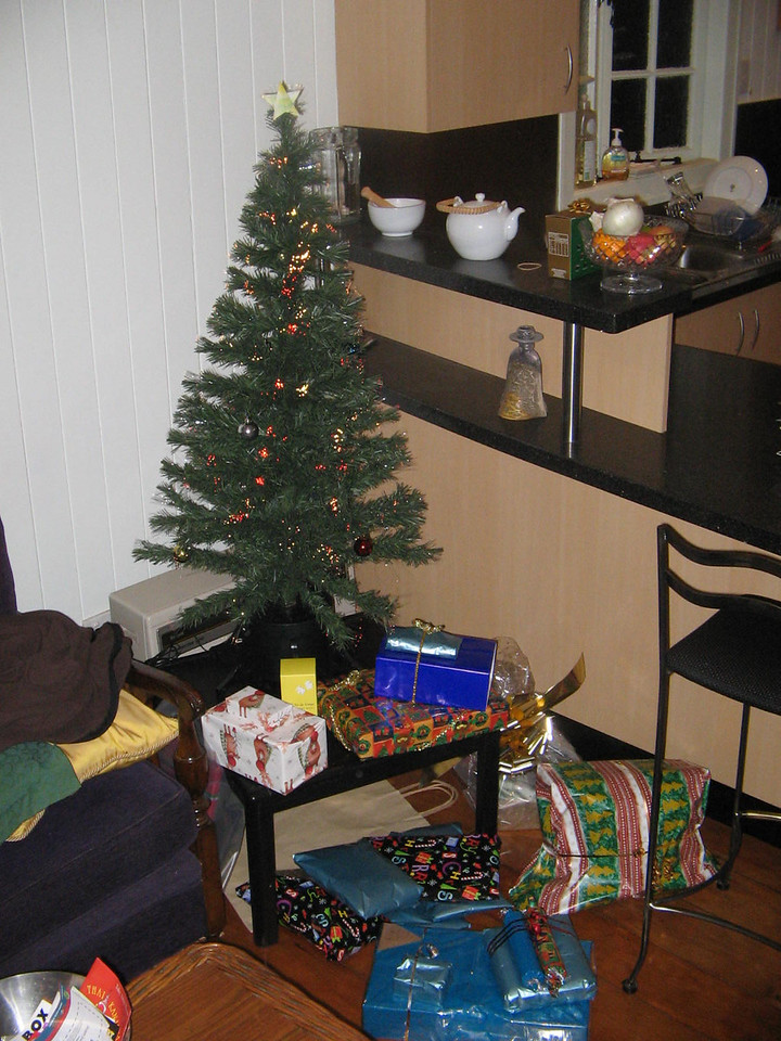 our fiberoptics christmas tree and pressies!