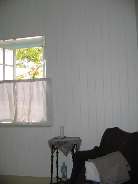 check out my lovely homemade curtains... those are napkins and safety pins. oh yeah. some things dont change.