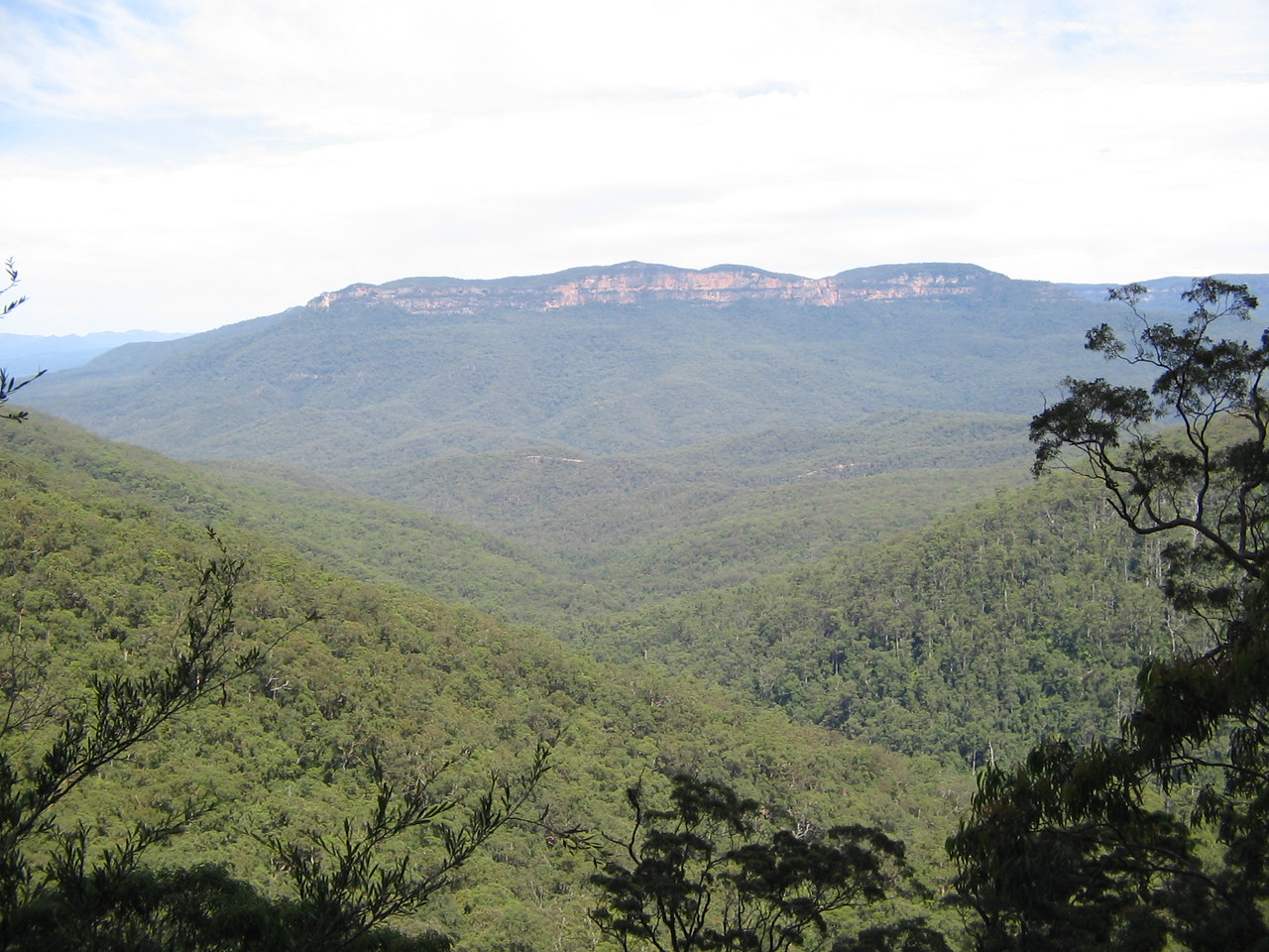 wentworth falls - never found the koalas