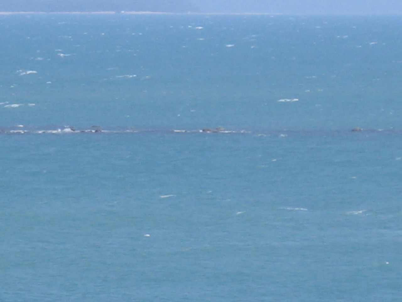 yup... thats the picture of the great barrier... ash has better photos that ill update!