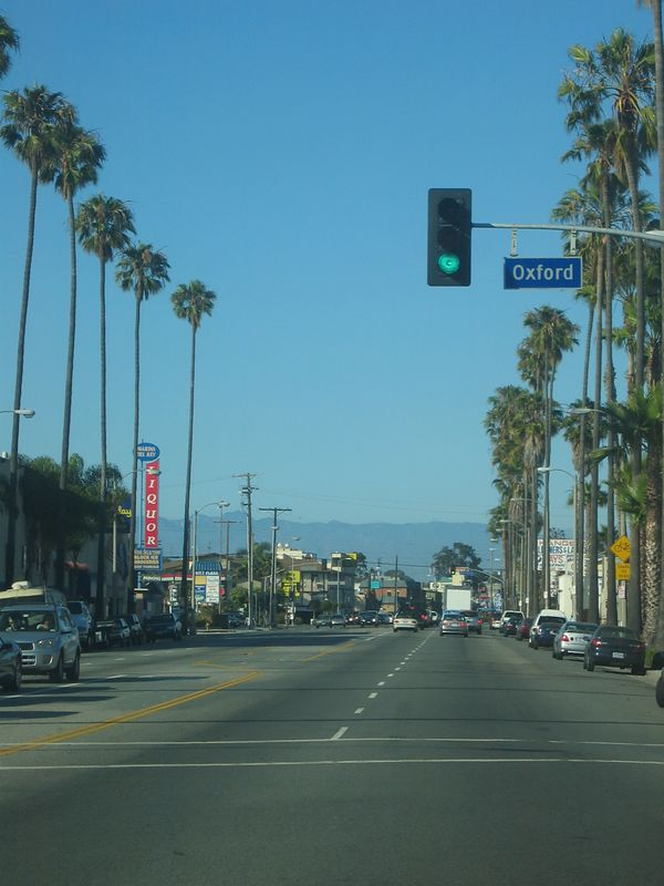 Palm trees and the mountains in the back!