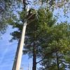 Sarah at the top