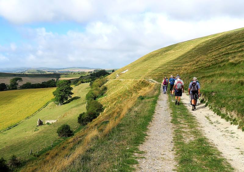 Easy walking in lovely countryside at Bincombe Hill