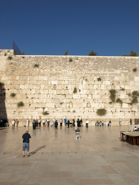 Western Wall:  no matter how patient I was, this guy just refused to move....