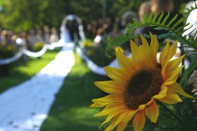 Jess and Ben Wedding