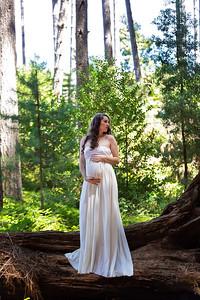 Jess Maternity (61)