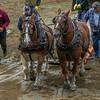 Deerfield Fair Horse Pull 2015