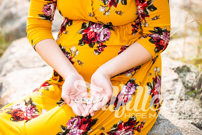 Jessika Matthews Maternity Session 2019 (19 of 111)