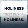 Steven Lawson on Holiness
