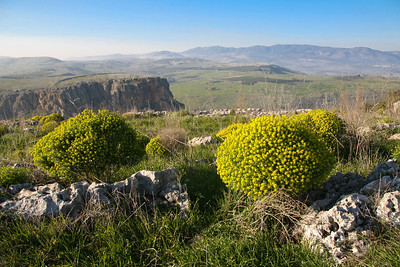Mt. Nitai from Mt. Arbel