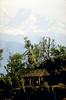 Mt Everest from Maratika, Nepal - by Mannie Garcia