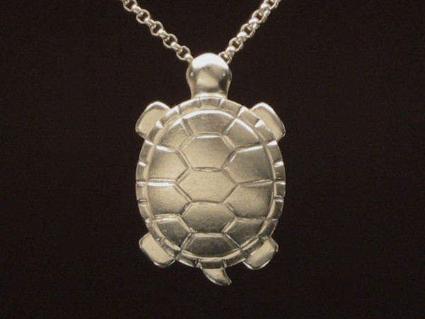Kim • Turtle Locket