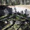 Kaunas Paneriai Forest Memorial Site