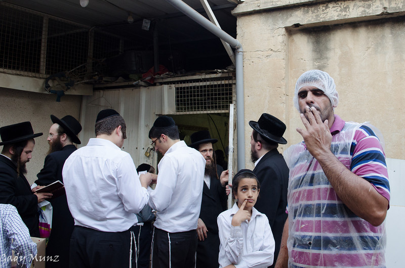 Kapparot - כפרות - in Bnei Brak