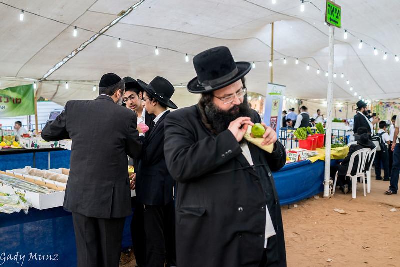 Preparing for Sukkot