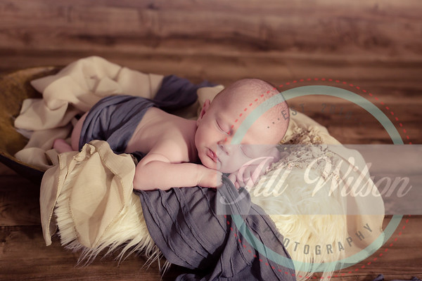 Jill Wilson Photography LLC Newborns