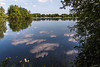 Cotswold Water Park 19th June-8553.JPG