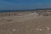 Ogmore By Sea 20th June-8615.JPG