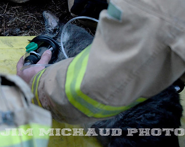 A South Windsor firefighter gives oxygen to one of the three cats that were rescued from a house fire, Tuesday, January 8, 2019, in South Windsor. The fire came in around 4pm at 234 Long Hill Road when a passing motorist noticed smoke coming from the house. Three dogs escaped when police arrived and opened the door. The three cats were removed by firefighters, 2 responded quickly to the oxygen they were given a third seemed to be unconscious as firefighters continued to work on him. The house sustained heavy damage to the kitchen and living room, the area around a wood stove sustained the heaviest damage, Chief Kevin Cooney said. The house was deemed uninhabitable and the residents are staying with other family members Cooney said. (Jim Michaud / Journal Inquirer)