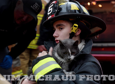 South Windsor explorer firefighter Matt Delage, 15, comforts one of the three cats that were rescued from a house fire, Tuesday, January 8, 2019, in South Windsor. The fire came in around 4pm at 234 Long Hill Road when a passing motorist noticed smoke coming from the house. Three dogs escaped when police arrived and opened the door. The three cats were removed by firefighters, 2 responded quickly to the oxygen they were given a third seemed to be unconscious as firefighters continued to work on him. The house sustained heavy damage to the kitchen and living room, the area around a wood stove sustained the heaviest damage, Chief Kevin Cooney said. The house was deemed uninhabitable and the residents are staying with other family members Cooney said. (Jim Michaud / Journal Inquirer)