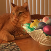 Presto guards the Easter Eggs created by Mary Lacey